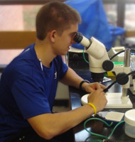 Male student in blue shirt looks through microscope.